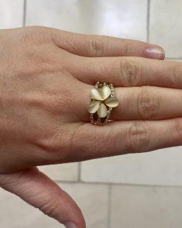 Ring Arizona